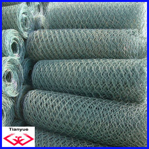 Hot Dipped Galvanized Hexagonal Wire Netting (TYD-055) pictures & photos