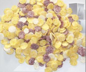Corn Flakes Processing Line (TSE65/TSE70 /TSE85)