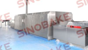 Baking Tunnel Oven (HJ-600, HJ-1000, HJ-1200) pictures & photos