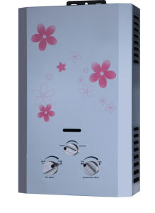 Flue Type Gas Water Heater with Cold-Rolled Steel Panel (HJ-T8201)
