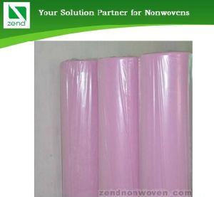 PP Non Woven Fabric (Zend05-021) pictures & photos