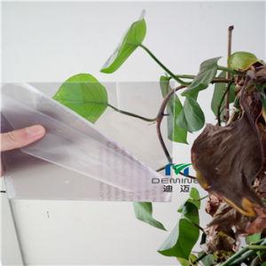 Custom Size Transparant Polycarbonate/ PMMA Door pictures & photos