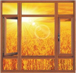 Wd55 Series Heat Insulation Casement Window (pH-8105) pictures & photos