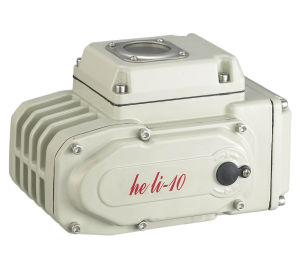 High Quality Electric Actuator Hl-10 pictures & photos