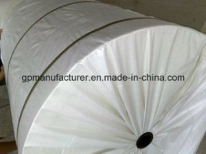 Polyester Mat for Sbs, APP Waterproofing Membrane pictures & photos