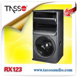 Db PA Speaker (RX123) 12 Inch