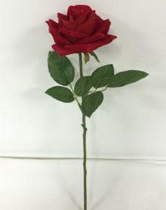 Artificial Flowers of Mountain Rose 71cm Gu-D7019 pictures & photos