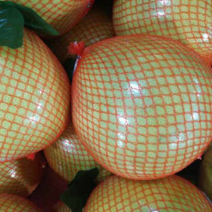Chinese Exporting Standard Fresh Honey Pomelo pictures & photos