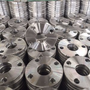 SABS Sans 1123 Hot-Galvanized Forged Carbon Steel Flanges pictures & photos
