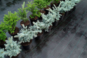 China Factory Weed Mat Fabric pictures & photos