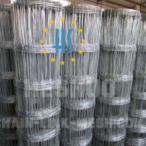 2.5mm Ht13/122/5 Horse Wire pictures & photos