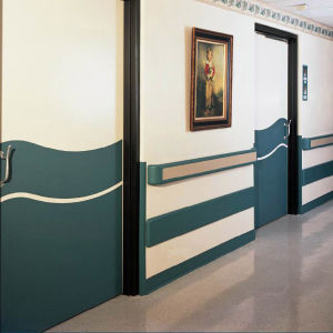 Creative Fireproof Vinyl Hospital Wall Guard pictures & photos