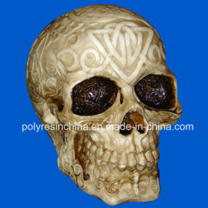 Polyresin Skull, Resin Skull Bust pictures & photos