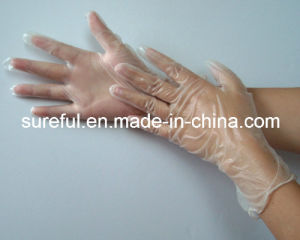 Powdered Free Vinyl Glove for Food Service pictures & photos
