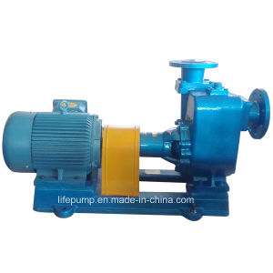 Cyz Marine Bronze Impeller Sea Water Pump pictures & photos