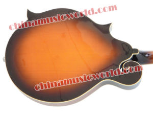 Best Seller! Afanti Mandolin (AM-F10) pictures & photos