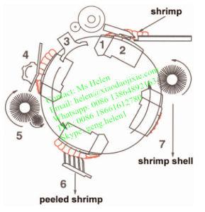 2015 Hot Sale Automatic Shrimp Peeler Machine/ Shrimp Peeling Machine pictures & photos