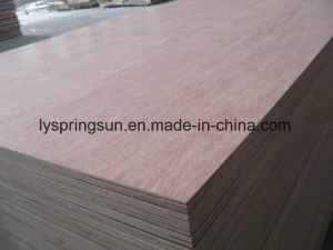 Packing Plywood in Economical Price pictures & photos