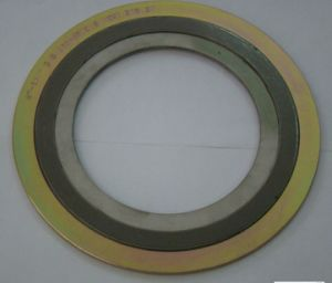 Spiral Wound Gasket with Outer and Inner Ring pictures & photos