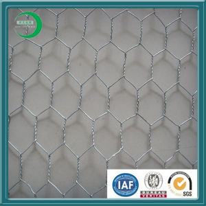 Galvanized Chicken Hexagonal Wire Mesh in Stock (H01) pictures & photos