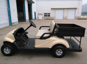 Utility Vehicle 2 Seater Electric Golf Cart with Cargo Box Made by Dongfeng for Sale pictures & photos
