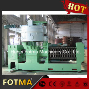 Cold Oil Making Mill/ Double Shaft Screw Press Machine (SYZX24) pictures & photos
