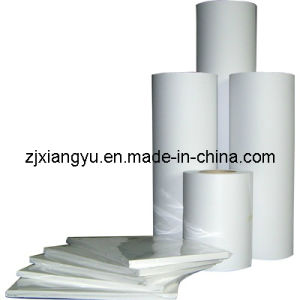 PP Self Adhesive Film (GL-PP2305)