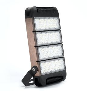 Five Years Warranty 160W Driverless LED Flood Light IP65 pictures & photos