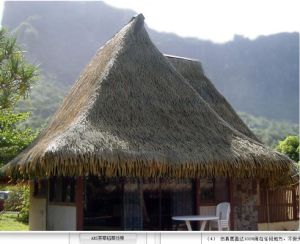 Plastic Thatch Roof Tiles and Palapa Thatch Simulation Thatch Qwi-St003 pictures & photos