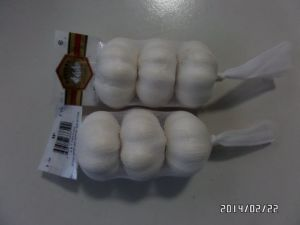 Competitive Pricesmall Packing Normal White Garlic &Pure White Garlic pictures & photos