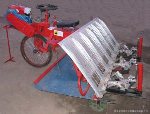 2zt-6300b Series Diesel Rice Transplanter pictures & photos