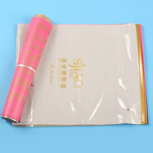 High Quality Branded Custom Printed Slider Ziplock Plastic Bags (FLZ-9217) pictures & photos