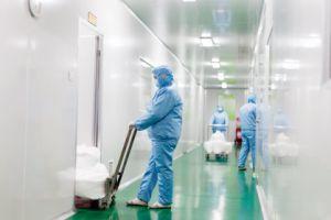 Low Price China Wholesale Organic Sweetener Powder in Bulk Stevia pictures & photos