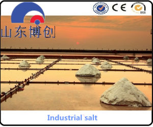 Snow Melting Agent and Sodium Chloride pictures & photos