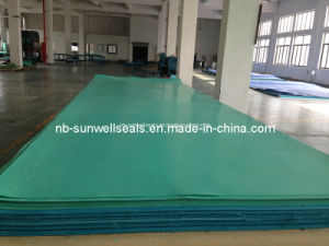 Compression Sheets 200/300/400 Degree Asbestos Rubber Sheet (SUNWELL B701) pictures & photos