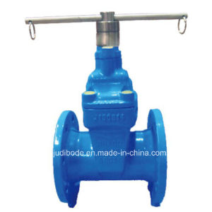 Resilient Seated Nrs Gate Valve with Lock-L Type