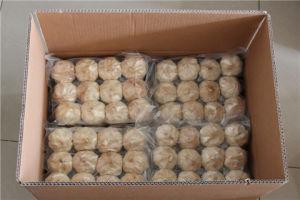 Whole Black Garlic (Multi Bulb) pictures & photos