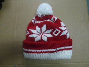 Children′s Knitted Caps Hats Kids Hats Clothing Fashion Acrylic pictures & photos
