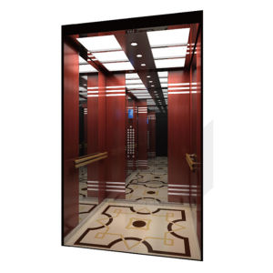 Made in China Super Nice Quality Passenger Elevator pictures & photos