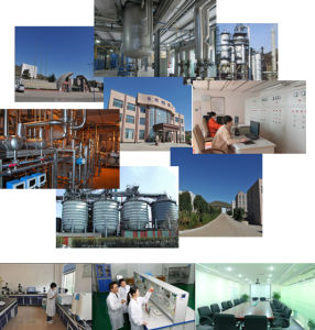 Silicon Dioxide/Nano Sio2/Sio2 Nanoparticle