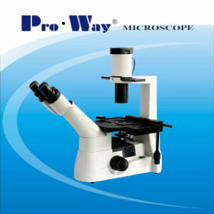 Professional Inverted Biological Microscope (XDS-PW403) pictures & photos