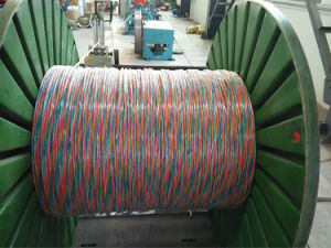 Shielded Multicore Control Cable pictures & photos