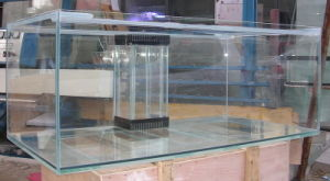 Good Price High Quality Ultra Clear Glass Fish Aquariums pictures & photos