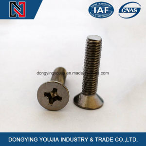 Carbon Steel DIN965 Cross Recessed Countersunk Head Machine Screw pictures & photos