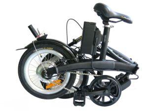 Lithium 250W Folding Electric Bike (TDN12Z)