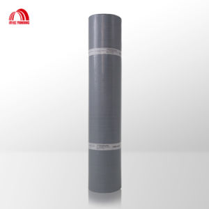 APP/Sbs Modified Bitument Self-Adhesive Waterproof Membrane pictures & photos