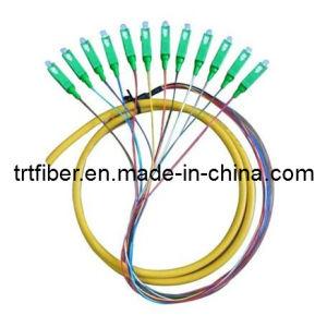 Sc/APC Singlemode 12 Fiber Cores Fiber Pigtail pictures & photos