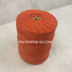 High Quanlity Poly Wire pictures & photos