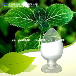 High Quality Plant Extract Yohimbine Hydrochloride/Yohimbine HCl pictures & photos