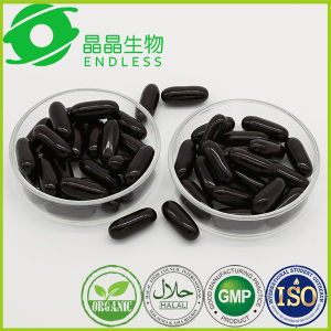 GMP Factory Improve Eyesight 1000mg Bilberry Capsule pictures & photos
